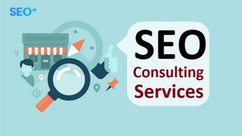 Tư vấn SEO miễn phí, xây dựng chiến lược SEO hiệu quả